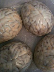 redvelvet-brains
